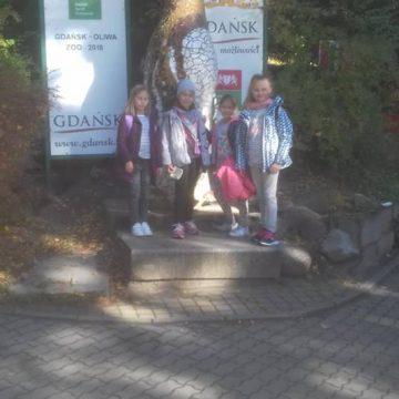 Dziś Światowy Dzień Zwierząt. Z tej okazji klasy 4c, 4a,4b i 4e wybrały się na sympatyczna wycieczkę do zoo w Gdańsku Oliwie. Pogodę zamówiliśmy super.
