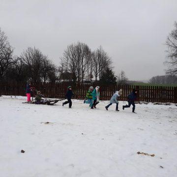Biała szkoła z psimi zaprzęgami.Klasa 3 c brała udział w 3 dniowej wycieczce do Miechucina.